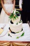 Les jeunes mariés coupent leur gâteau de mariage Photo stock