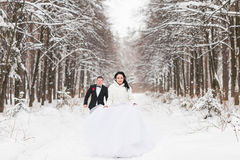 Les jeunes mariés courent sur un parc d'hiver photo libre de droits