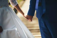 Les jeunes mariés de pair Image stock