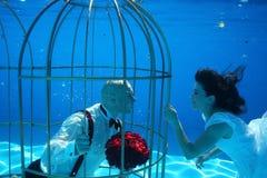 Les jeunes mariés et une eau sous-marine de piscine de cage à oiseaux plongent Photo libre de droits