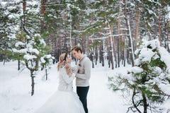 Les jeunes mariés gais dans le beige ont tricoté des pulls dans des regards neigeux de nouveaux mariés de forêt à l'un l'autre L' Photographie stock libre de droits