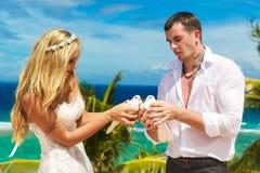 Les jeunes mariés heureux avec les colombes blanches sur une plage tropicale u Photographie stock libre de droits