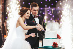 Les jeunes mariés heureux ont coupé le gâteau de mariage dans l'avant du firew Images stock