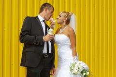 Les jeunes mariés mangent la crème glacée  Image libre de droits