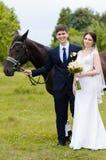 Les jeunes mariés se tiennent en parc près du cheval, épousant la promenade Robe blanche, ajouter heureux à un animal Fond vert Photos stock