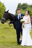 Les jeunes mariés se tiennent en parc près du cheval, épousant la promenade Robe blanche, ajouter heureux à un animal Fond vert Photo stock