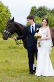 Les jeunes mariés se tiennent en parc près du cheval, épousant la promenade Robe blanche, ajouter heureux à un animal Fond vert Image libre de droits