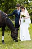 Les jeunes mariés se tiennent en parc près du cheval, épousant la promenade Robe blanche, ajouter heureux à un animal Fond vert Image stock