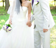 Les jeunes mariés tenant des mains Photos libres de droits