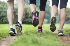Les jeunes s'exerçant en parc Image libre de droits
