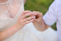 Les jeunes se toilettent s'usent la mariée de boucle Sur le fond blanc Image libre de droits