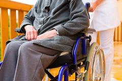 Les jeunes soignent et aîné féminin dans un fauteuil roulant Images stock
