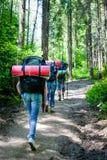 Les jeunes trimardant avec des sacs à dos dans la forêt Photos libres de droits
