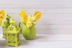 Les jonquilles ou le narcisse jaunes lumineuses de ressort fleurit dans pi vert Image libre de droits