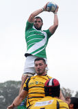 Les joueurs de rugby luttent pour la boule dans le jeu de généraliste du rugby 7's Images libres de droits