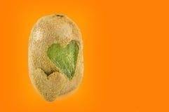 Les kiwis avec des formes de coeur ont découpé dans sa peau Images libres de droits