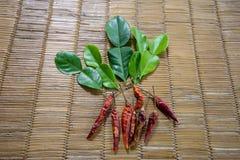 Les légumes Image libre de droits
