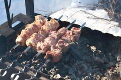 Les légumes, la viande, les champignons et le pain ont grillé à l'enjeu et au BBQ Photographie stock
