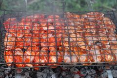 Les légumes, la viande, les champignons et le pain ont grillé à l'enjeu et au BBQ Photographie stock libre de droits