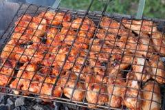 Les légumes, la viande, les champignons et le pain ont grillé à l'enjeu et au BBQ Photo stock