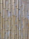 Les lamelles en bambou Images stock