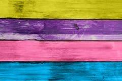 Les lamelles ont peint le fond en bois coloré de texture Images libres de droits