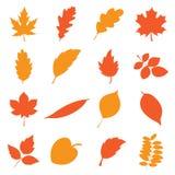 les lames d'automne ont placé Illustration de Vecteur