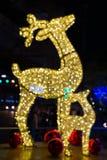 Les lampes décoratives pour fabriquer un cerf commun à partir de le foyer brouiller le bokeh Images libres de droits