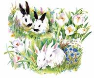 Les lapins d'aquarelle avec le modèle sans couture de fleurs dirigent l'illustration Photos libres de droits