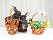 Les lapins se reposent près d'un panier avec des oeufs de pâques Photos libres de droits