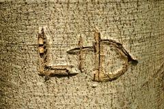 Les lettres de L et de D ont découpé dans le tronc d'arbre Images stock