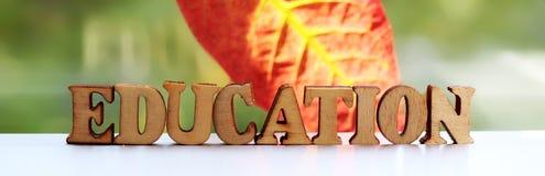 Les lettres en bois d'éducation d'inscription l'automne poussent des feuilles Images libres de droits