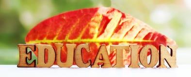 Les lettres en bois d'éducation d'inscription l'automne poussent des feuilles Photos libres de droits