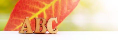 Les lettres en bois d'ABC d'inscription l'automne poussent des feuilles Photographie stock