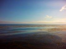 Les lits de varech au-dessus des mers bleues se mélangent dans l'horizon Photographie stock