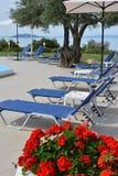 Les lits pliants et le géranium fleurit près d'une piscine Photo libre de droits
