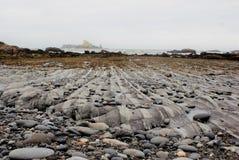 Les lits verticaux ont survécu à lisse par action côtière de vague photo libre de droits
