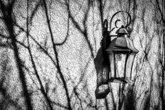 Les longues et déprimées ombres de branche rampent à travers un mur trempé par soleil avec la lanterne de cru photo libre de droits