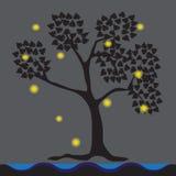 Les lucioles ont vécu sous des arbres, bord de mer Image libre de droits