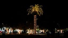 Les lumières de Noël décorent Marion Square à Charleston, la Caroline du Sud Photographie stock libre de droits
