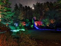 Les lumières de Noël de jardins de Buchart musardent image stock