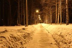 Les lumières illuminent la route Photos libres de droits