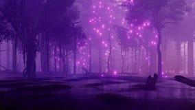 Les lumières magiques sur la forêt rampante de nuit inondent 4K banque de vidéos