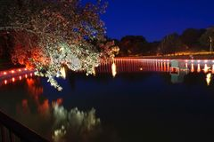 Les lumières rouges autour de l'étang faisant des arbres regardent le rose foncé la nuit Longue exposition Image libre de droits