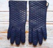 Les lunettes de soleil de gants en cuir pincent le ressort Autumn Womens Accessories de mode vêtent le concept images libres de droits