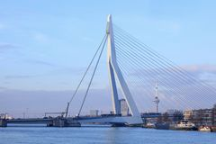 Les 800 mètres long Erasmusbrug iconique à l'aube, Rotterdam, Pays-Bas Images stock