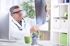 Les médecins supérieurs d'orthopédiste examinent des rayons X photographie stock libre de droits