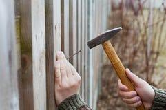 Les mains d'homme conduisent le clou avec un marteau dans la barrière en bois Photographie stock libre de droits