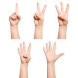 Les mains d'isolement d'enfants montrent au numéro un deux trois quatre cinq Photographie stock libre de droits