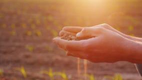 Les mains d'un agriculteur avec la terre fertile Concept d'agriculture biologique Image stock